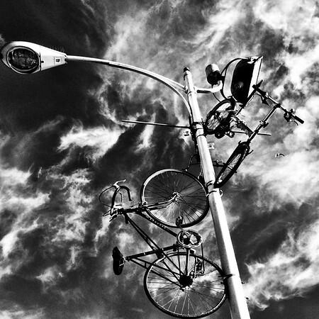 Bikes in Jack London Square