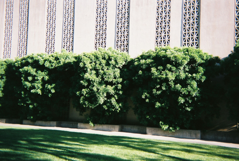 The Firestone building sits on Caltech's campus.