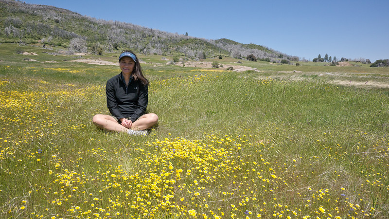 Catherine in a meadow of flowers off the west side of the 79 between Sunrise Hwy and Lake Cuyamaca.  North Peak is in the background. - shot @ ISO 320, f/5.6, 1/1600 sec, on Panasonic DMC-GH2 w/ LUMIX G VARIO 7-14/F4 lens at 14 mm