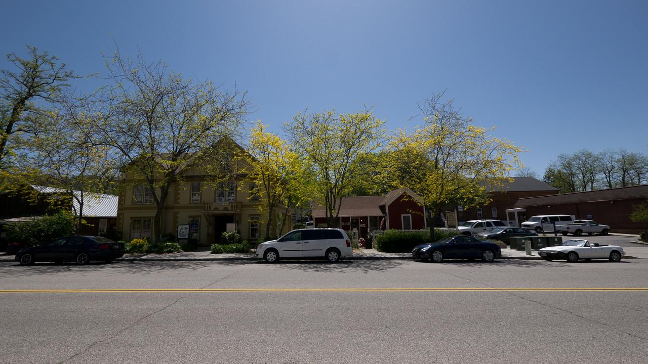 Trees with yellow leaves - shot @ ISO 160, f/9.0, 1/500 sec, on Panasonic DMC-GH2 w/ LUMIX G VARIO 7-14/F4 lens at 7 mm