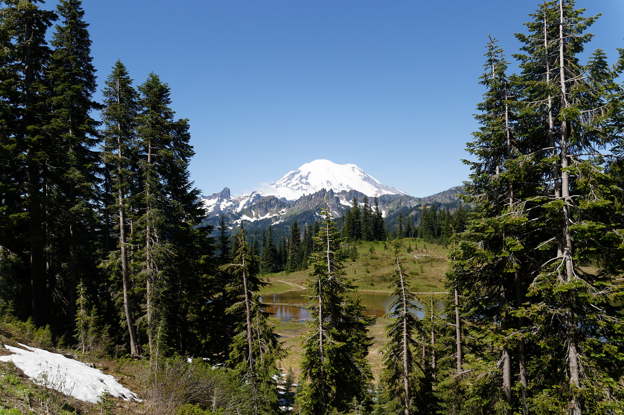 Mt Rainier from near Chinook Pass, WA