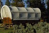 covered wagon large