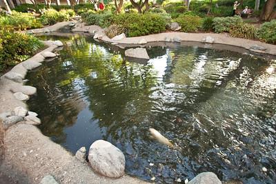 5738 Turtle Pond