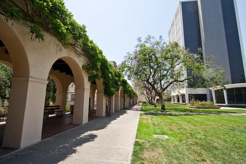 6182 Caltech