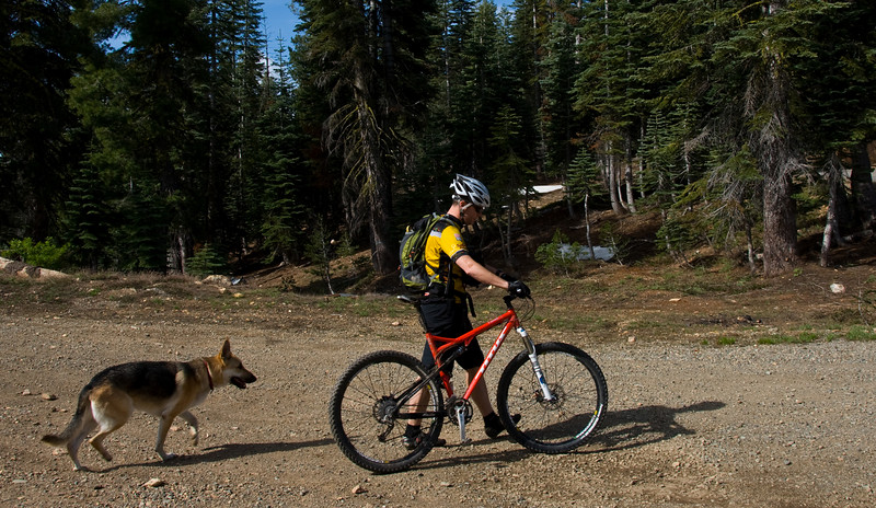 Top of the Downieville Downhill - June 2009