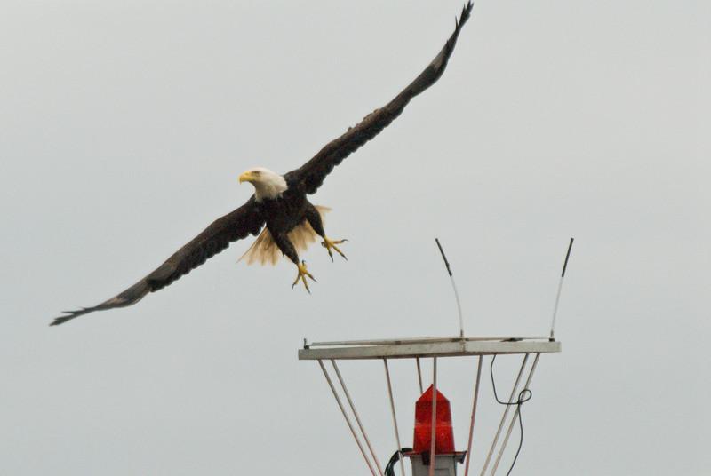 Take off!  Juneau AK