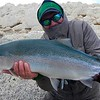 Steve Flood with a rare blue back chromer from the Bay of Pigs