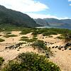 Ka'ena Point State Park Reserve.
