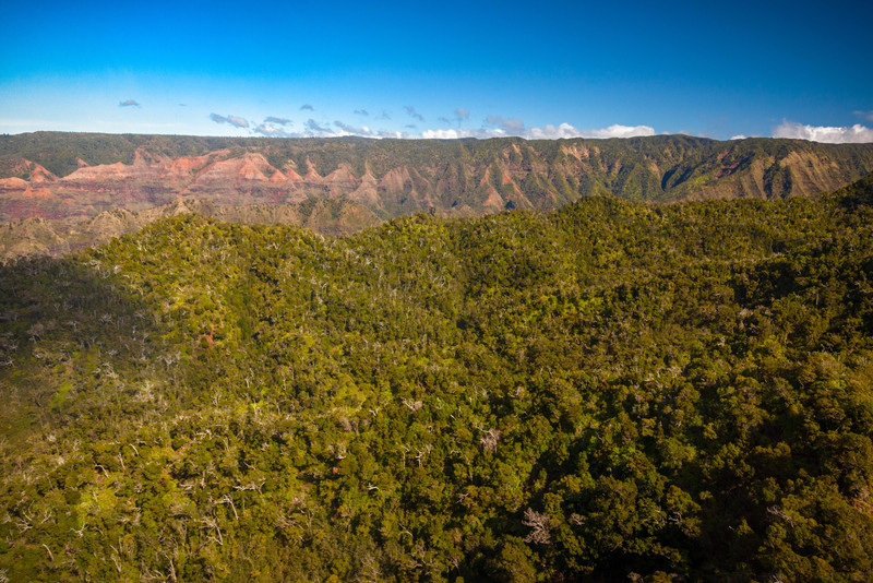 APPROACH TO WAIMEA CANYON - THE GRAND CANYON OF HAWAII