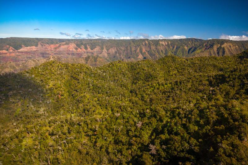 APPROACH TO WAIMEA CANYON - THE GRAND CANYON OF HAWAII