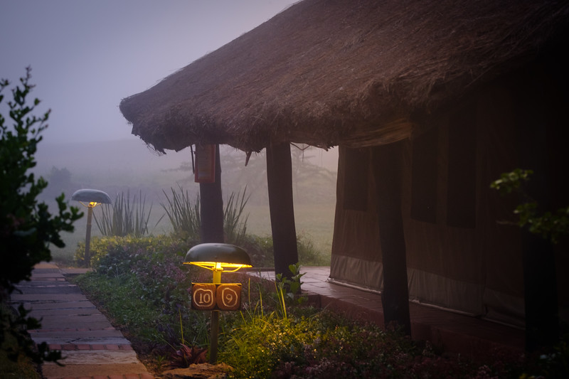 FOGGY MORNING AT SWEETWATERS CAMP