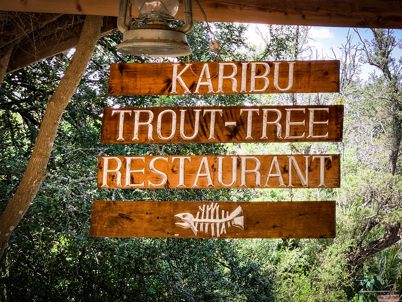 LUNCH AT THE TROUT-TREE RESTAURANT