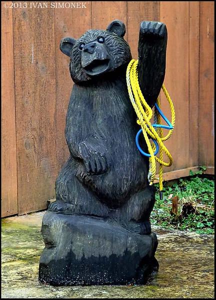 """FRIENDLY BEAR"",Ketchikan,Alaska,USA."