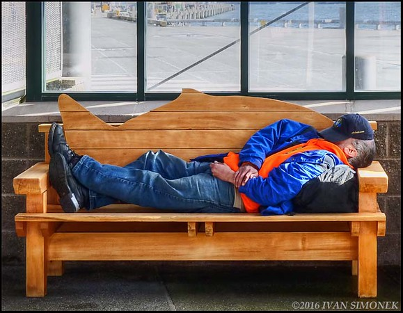 """SLEEPY  IN  KETCHIKAN""."