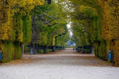 The gardens of Schönbrunn as they appear today were completed shortly before the death of Maria Theresa in 1780.