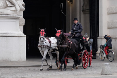 Reminiscent of the 16th through 18th centuries, horse drawn carriages still offer transportation in the old city of Vienna.