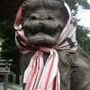 A dog's face ia covered by TENUGUI(japanese towel): right side