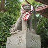 Koma Inu, a dog in front of shrine(left)
