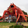 The Big Lobster. Kingston SE