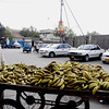 Banana Walla, Karachi, Pakistan<br /> scenes of daily life in markets and bazaars in Karachi<br /> (Credit Image: © Chris Kralik/KEYSTONE Press)