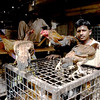 Live poultry walla, Karachi, Pakistan<br /> scenes of daily life in markets and bazaars in Karachi<br /> (Credit Image: © Chris Kralik/KEYSTONE Press)
