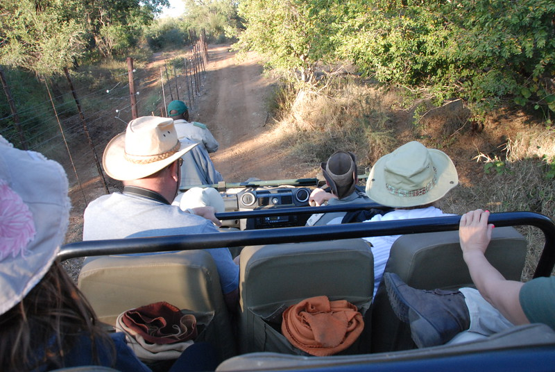 View from the top seat on the Range Rover. The electrified fence on the left is to prevent animals from leaving the protected park area and approach the nearby highway. Kruger is over 2 million acres, and is continguous with another 2+ million acres.