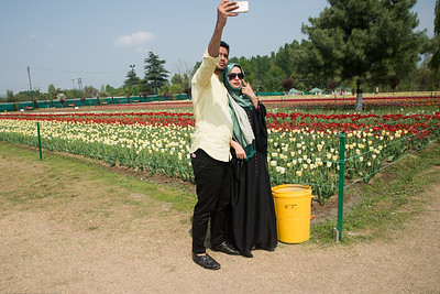 Couple taking selfie. Tulip Garden, Jammu and Kashmir, India. Asia's Largest, with 20 lakh tulips of 46 varieties spread over 30 hectares in the foothills of the snow-clad Zabarwan range.