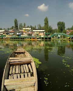 Dal Lake, J&K, India.