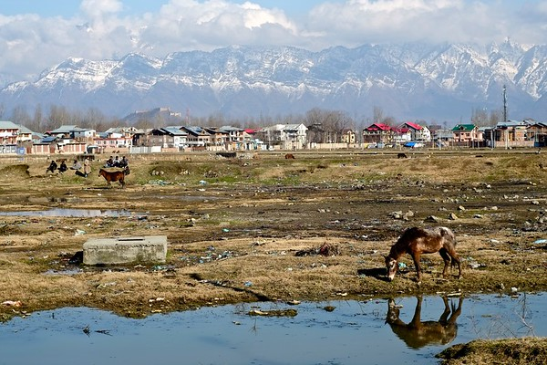 Close to City Life? (Outskirts of Srinagar)