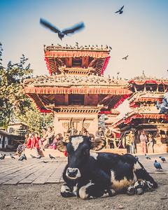 Kathmandu-17