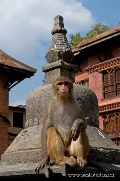 Kathmandu - Swayambhunath