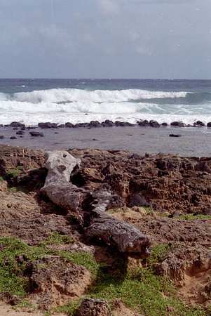South Shore Beaches
