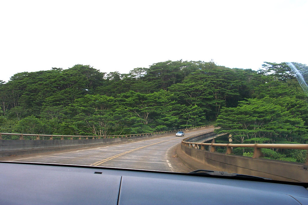 Day 3 - Crossing a bridge on the way to the road's end on the north shore. Cool looking trees. We are heading to Kee Beach to hike the Kalalau Trail. Photo by Helen
