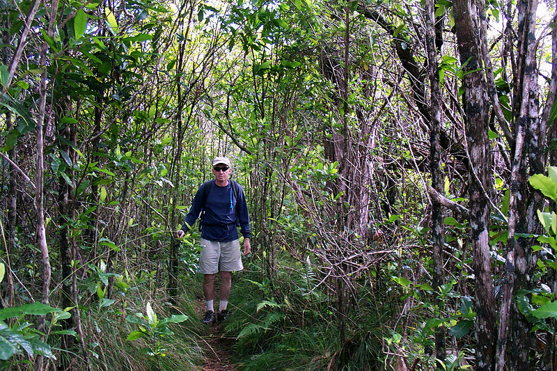It was nice when we reached a section of trail that wasn't overgrown. Photo by Helen