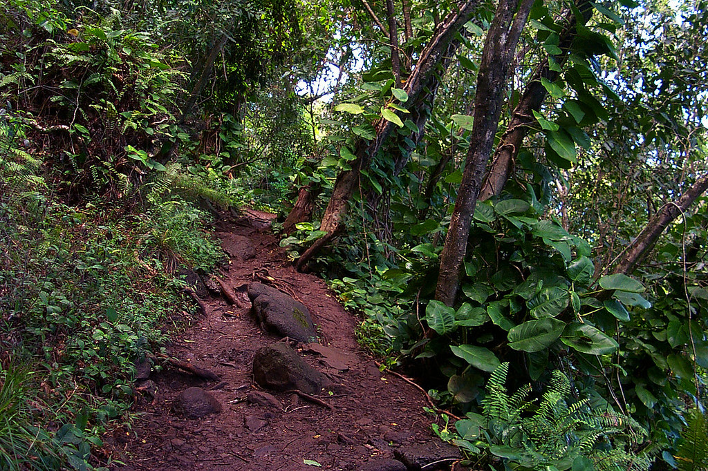 It rained the night before, so the trail was muddy. The dirt here has a lot of clay in it, very slippery.
