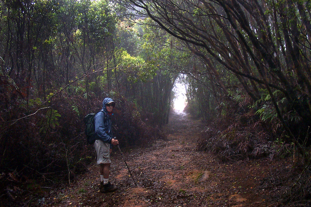 This is on the way out with about a mile to go to reach the paved road. It's raining really hard now. Photo by Helen