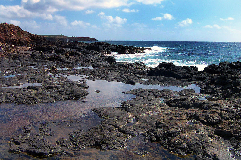 One last look at the tidepools. Next we drove up the Waimea Canyon Road to hike the Honopu Ridge Trail. It's an unmaintained trail that's should have a great view of the west coast.