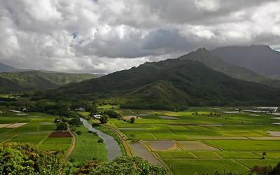 IMG_2940 - Hanalei Valley