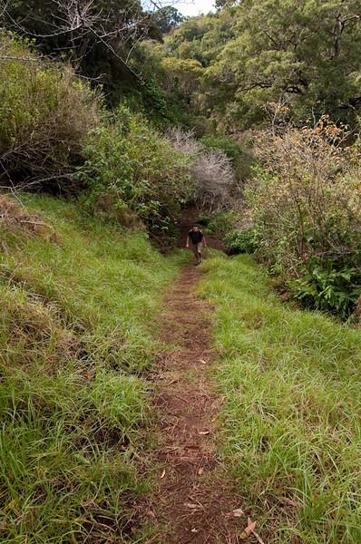 Hiking at Waimea Canyon
