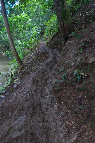 This is what passes for a trail.  Slip and slide in the mud.  Wear better shoes than flip flops.