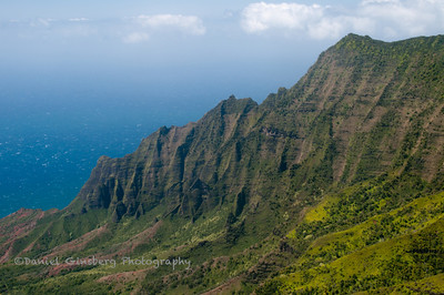 Kalalau Valley as  seen from the Na Pali  Kona Forest Reserve Pihea Trail.