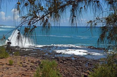 Beautiful Shoreline