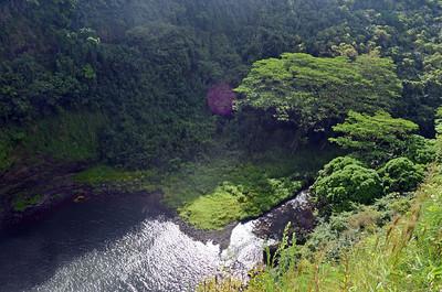 Waimea River Valley below the Falls