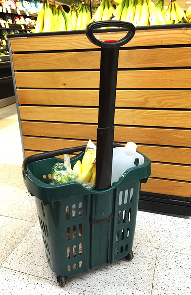 The last stop on our busy first day was the Foodland market where I found a terrific shopping basket just my size.  Loved it!