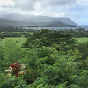 We drove north, but were too early to check in, so went to this scenic overlook of Hanalei and Hanalei Bay, of Puff The Magic Dragon fame.  I returned again and again for this great view.