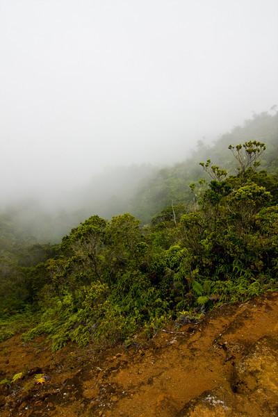 kauai-60