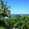 View From Joyce Doty's (Founder, Na Aina Kai) Home