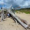 Jeane in Lean-to off Trail from Maha'ulepu Beach