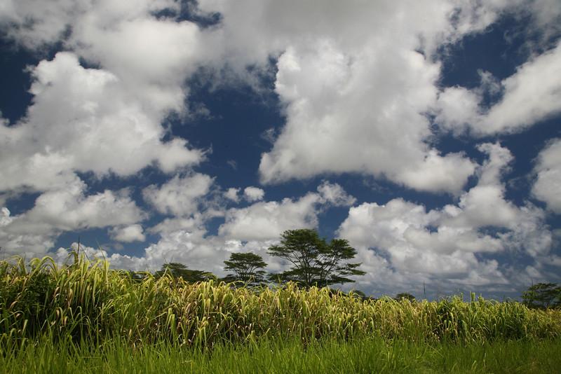 Sunshine in between rain storms on west Kauai.