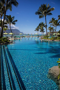 The St. Regis Pool